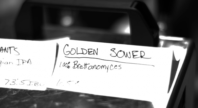 Against_The_Grain, Golden_Sower, Allbeer, El_Jefe, Jesper_Egelund, CBC